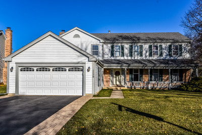 Hoffman Estates Single Family Home For Sale: 1170 Silver Pine Drive