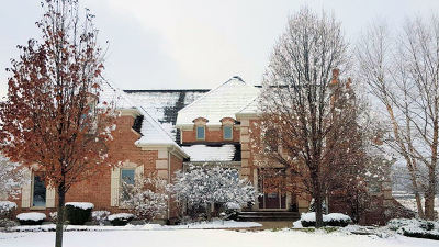 Bull Valley IL Single Family Home New: $749,500