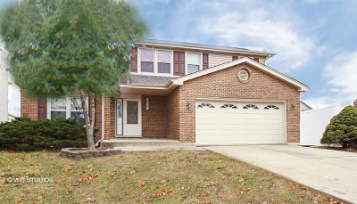 Tinley Park Single Family Home For Sale: 16625 Manchester Street