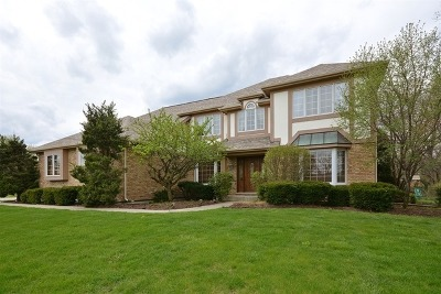 Wheaton Single Family Home Price Change: 1754 South Naperville Road