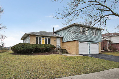 Richton Park Single Family Home For Sale: 5221 Imperial Drive
