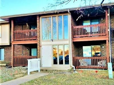 Streamwood Condo/Townhouse For Sale: 605 Garden Circle #3