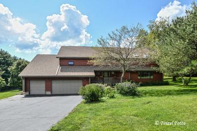 Woodstock Single Family Home New: 13919 Appleby Court
