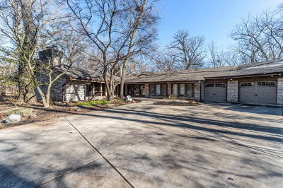 Naperville Single Family Home For Sale: 1508 Black Walnut Court