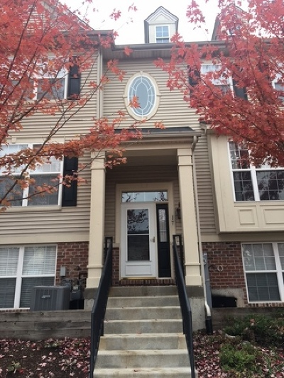 South Elgin Condo/Townhouse For Sale: 17 Melrose Court