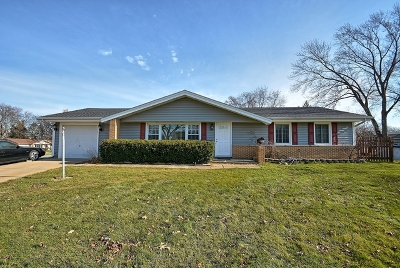 Schaumburg Single Family Home Contingent: 401 Orleans Lane