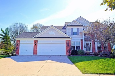 Streamwood Single Family Home For Sale: 155 Rosewood Drive