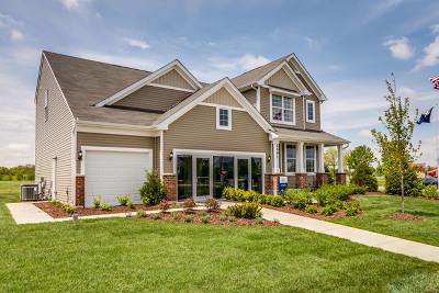 Plainfield Single Family Home For Sale: 15829 Brookshore Drive