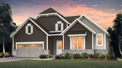 Naperville IL Single Family Home New: $431,990