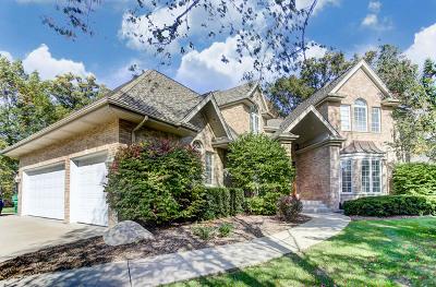 Homer Glen Single Family Home For Sale: 16141 Wildwood Lane