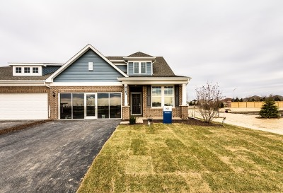 Naperville Condo/Townhouse For Sale: 4167 Lobo Lane
