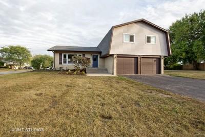 Tinley Park Single Family Home New: 6245 Arcadia Drive