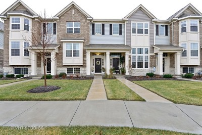 Naperville Condo/Townhouse New: 2969 Henley Lane