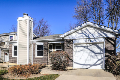Schaumburg Condo/Townhouse For Sale: 861 Colony Lake Drive #861