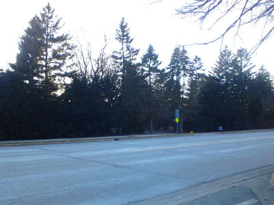 Palatine Residential Lots & Land New: 4641 Kirchoff Road