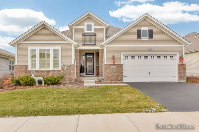 Naperville IL Single Family Home New: $519,900