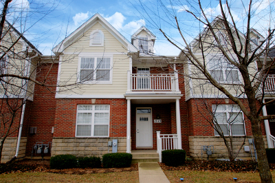 Schaumburg Condo/Townhouse For Sale: 1848 Keystone Place