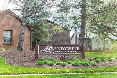 Crystal Lake Rental New: 435 Brandy Drive #C
