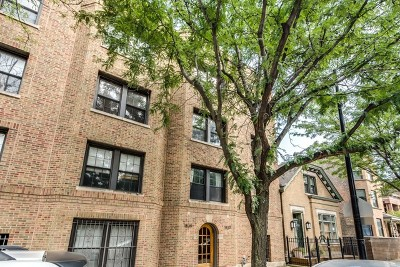 Chicago Condo/Townhouse New: 1839 North Sheffield Avenue #3N