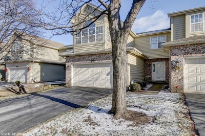 Naperville IL Single Family Home New: $289,900