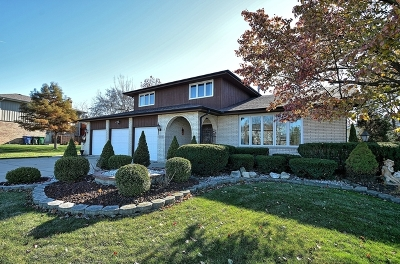 Homer Glen Single Family Home For Sale: 13235 West Stonewood Drive