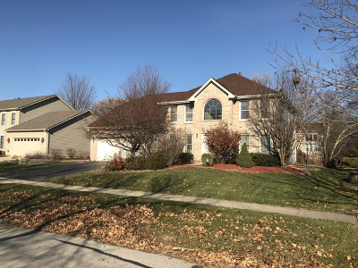 Naperville Single Family Home New: 2115 High Meadow Road