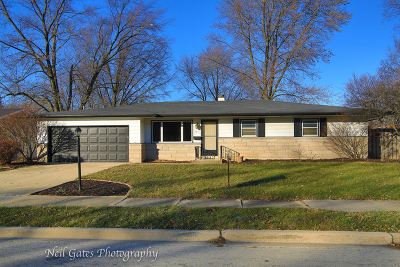Will County Single Family Home New: 2217 West Acres Road