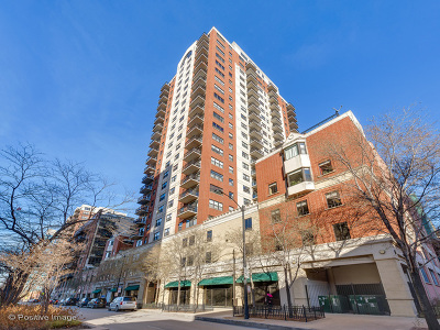 Chicago Rental New: 1529 South State Street #18B