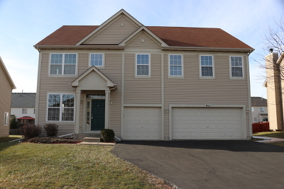 Joliet Single Family Home For Sale: 911 Salvia Lane