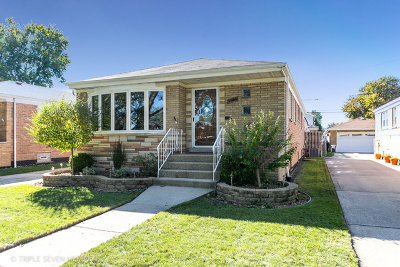 Chicago IL Single Family Home New: $344,900