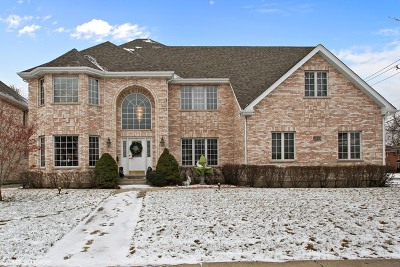 Niles Single Family Home For Sale: 9140 North Washington Street