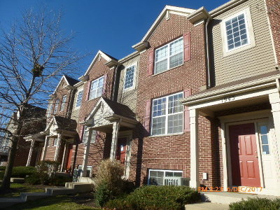 Naperville Condo/Townhouse New: 1945 Oxley Circle