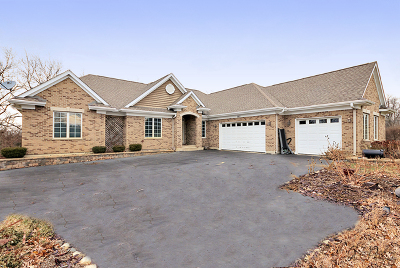 McHenry IL Single Family Home New: $374,900