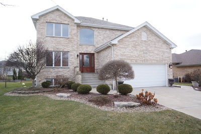 Orland Park Single Family Home For Sale: 10449 Venice Lane