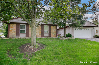 Schaumburg Single Family Home For Sale: 1307 Allison Lane
