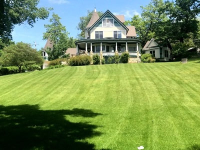 Joliet Single Family Home For Sale: 429 Buell Avenue