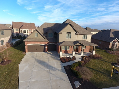 New Lenox Single Family Home For Sale: 2066 Water Chase Drive