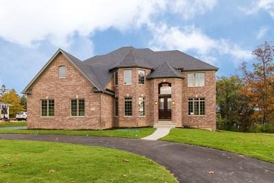 Naperville IL Single Family Home For Sale: $880,000