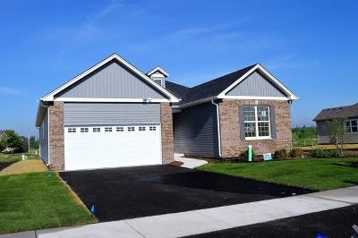 Plainfield Single Family Home For Sale: 13708 Sanibel Street