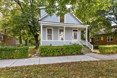 Chicago  Single Family Home For Sale: 10022 South Malta Street