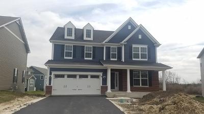 Hoffman Estates Single Family Home For Sale: 3415 Elsie Lot# 39 Lane