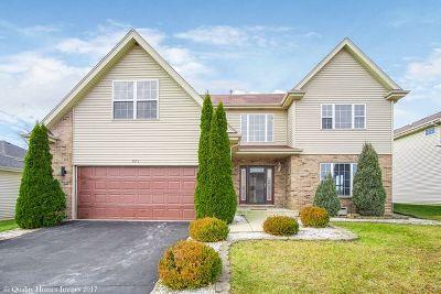 Sauk Village Single Family Home For Sale: 921 Laura Lane