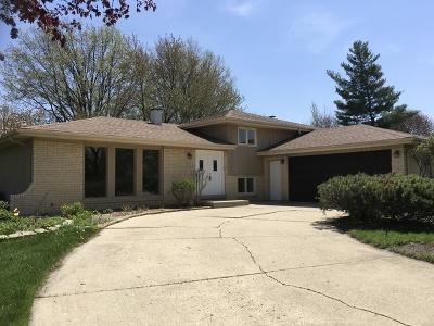 Bloomingdale Single Family Home For Sale: 353 Eagle Lane