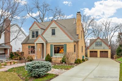 Glen Ellyn Single Family Home For Sale: 269 Van Damin Avenue