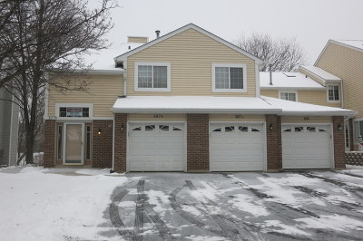 Streamwood Condo/Townhouse For Sale: 107 Winchester Drive #B