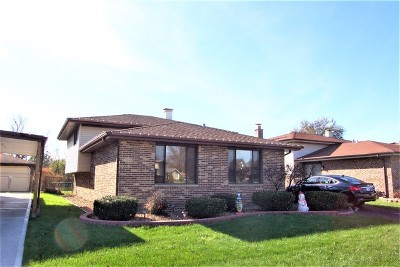 Alsip  Single Family Home For Sale: 4215 West Termunde Drive