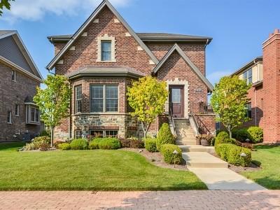 Homer Glen Single Family Home Price Change: 14606 Park Place