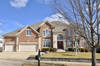 Naperville Single Family Home For Sale: 4512 Sunningdale Drive