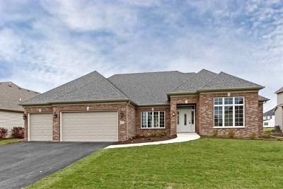 Elgin Single Family Home For Sale: 3682 Broadleaf Avenue
