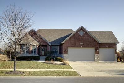 Plainfield Single Family Home For Sale: 13101 Skyline Drive